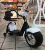 Children Electric Scooter Citycoco Ride on Car