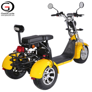 GaeaCycle Powerful 3wheel Electric Delivery scooter EEC COC with Rear Basket
