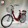 Hot Sale Green City Electric Bike 2020 Chinese Cheap e Bike Electric Bicycle for Sale