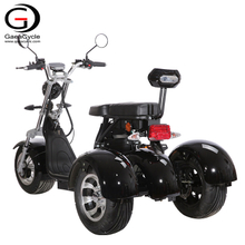 Powerful 3 Wheel Electric Scooter EEC COC 2000w Citycoco for Adult