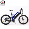 Full Suspension 1000W Mountain Electric Bicycle