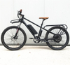 26inch New Cargo Electric Mountain Bicycle With 2 Seats