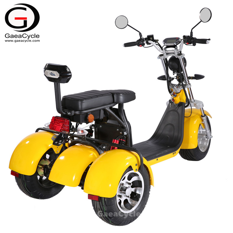 EEC COC 3 Wheeler Double Battery Citycoco Three Wheel Electric Scooter